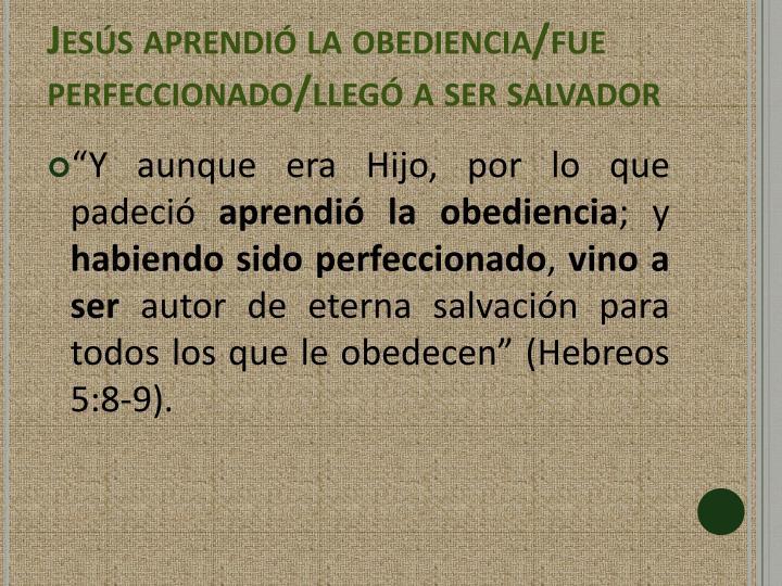 Jesús aprendió la obediencia/fue perfeccionado/llegó a ser salvador