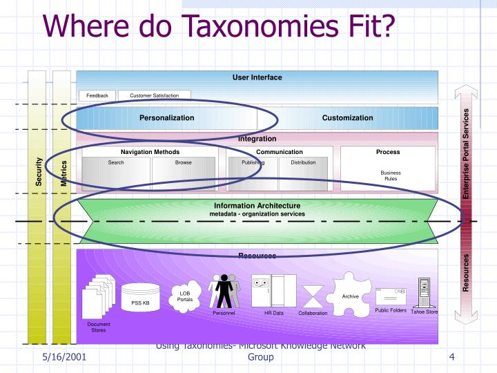 Where do Taxonomies Fit?