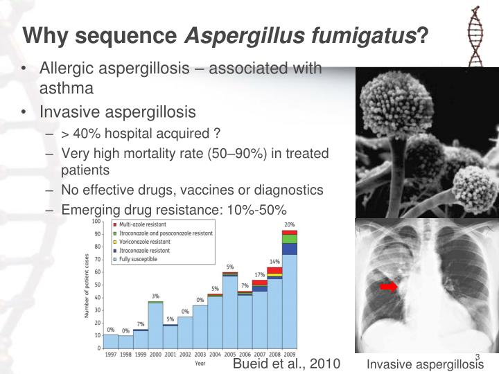 Why sequence aspergillus fumigatus