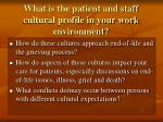 what is the patient and staff cultural profile in your work environment
