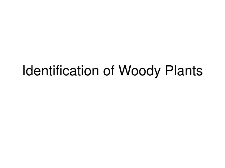 Identification of woody plants
