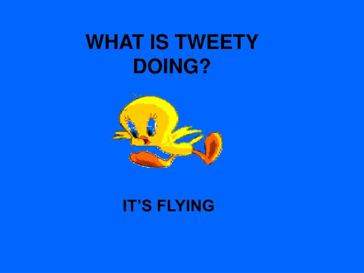 WHAT IS TWEETY DOING?