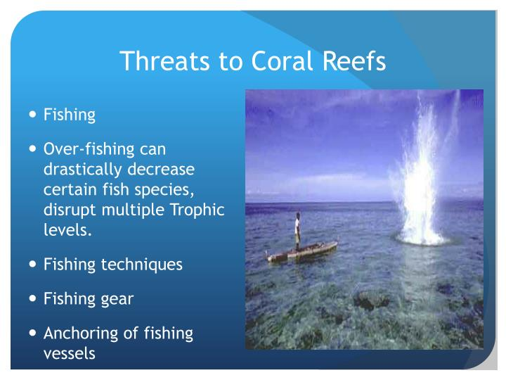 Threats to Coral Reefs