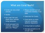 what are coral reefs4