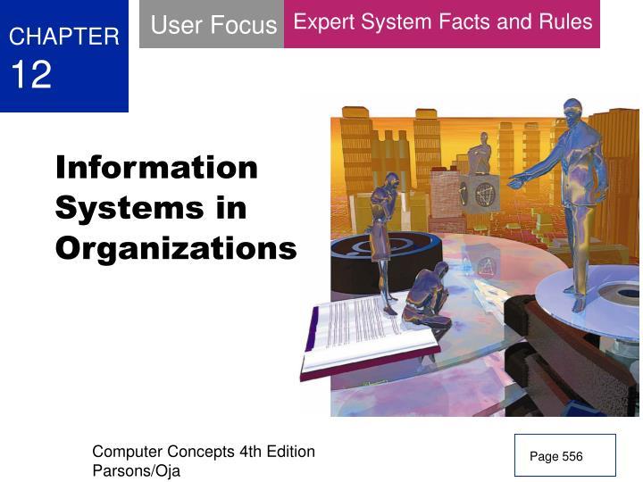 User Focus