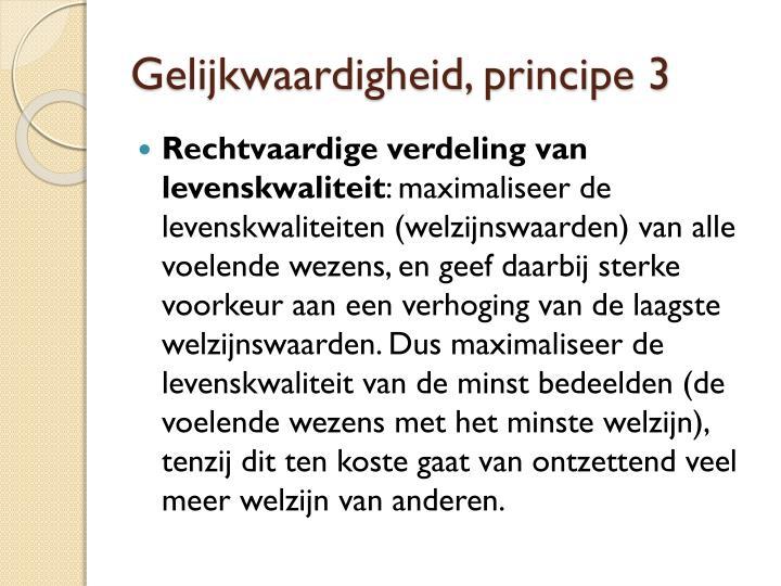 Gelijkwaardigheid, principe 3