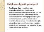 gelijkwaardigheid principe 3