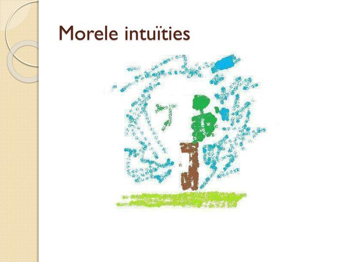 Morele intuïties