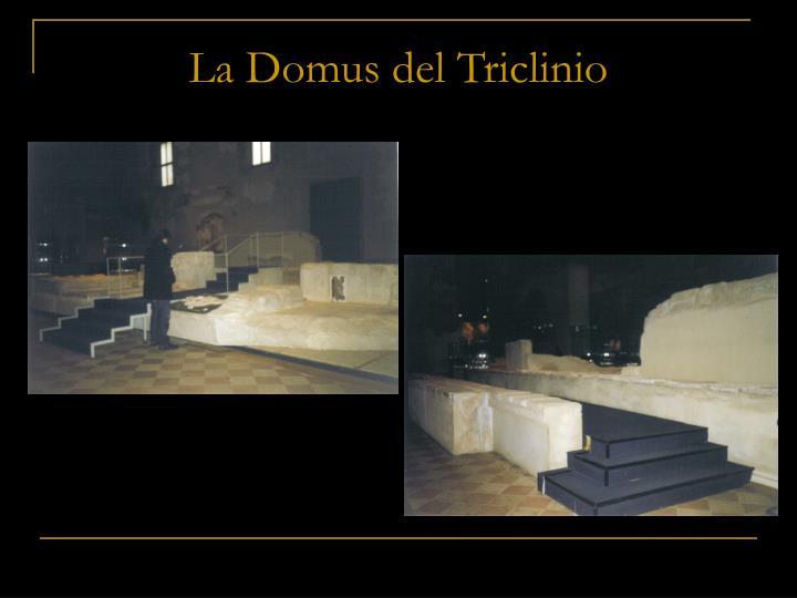 La Domus del Triclinio