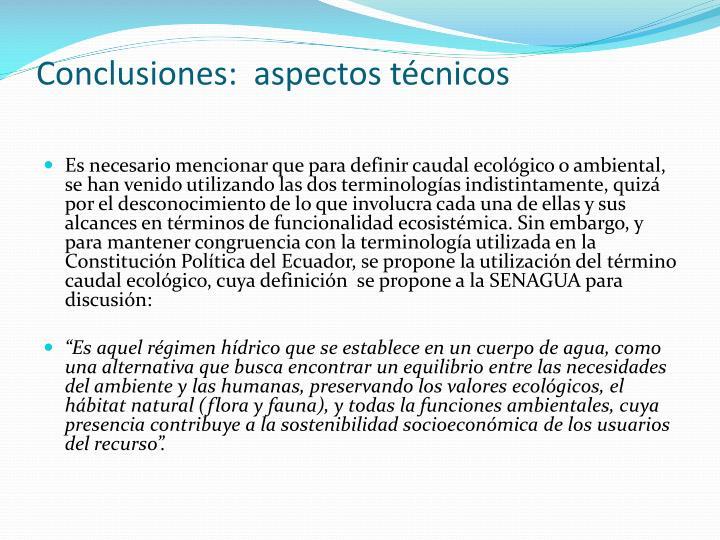 Conclusiones:  aspectos técnicos