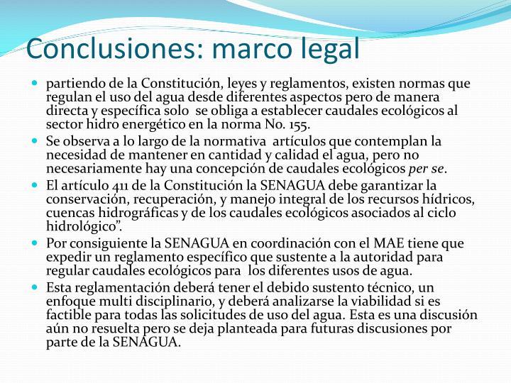 Conclusiones: marco legal