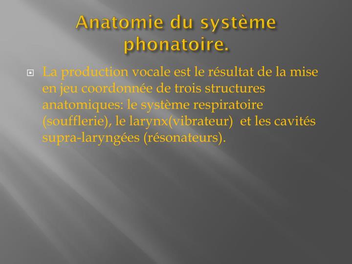 Anatomie du systme phonatoire.