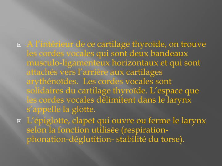 A lintrieur de ce cartilage thyrode, on trouve les cordes vocales qui sont deux bandeaux