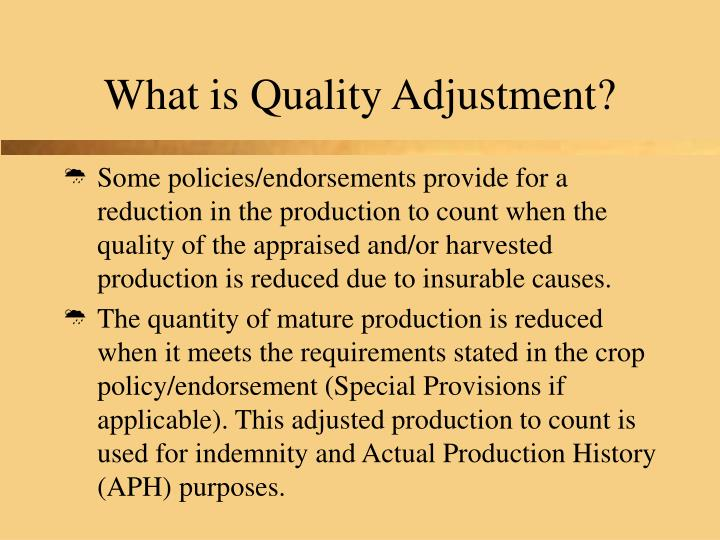 What is quality adjustment