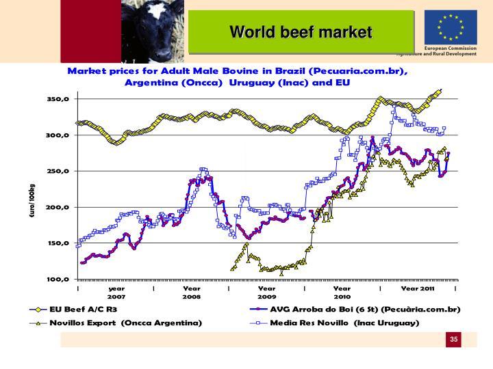 World beef market