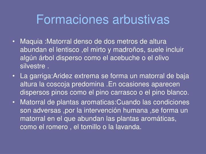 Formaciones arbustivas