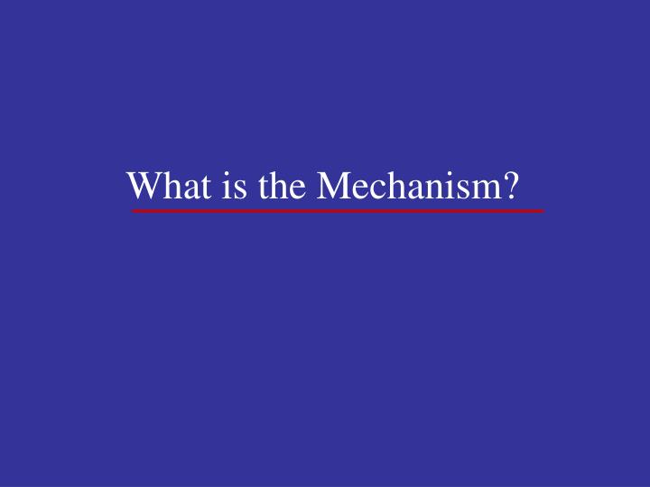 What is the Mechanism?