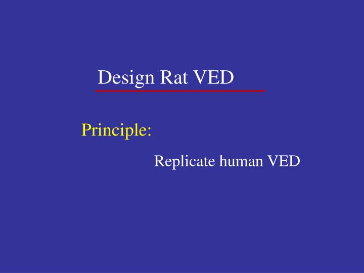 Design Rat VED