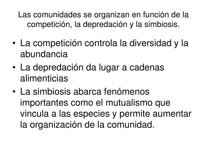 Las comunidades se organizan en función de la competición, la depredación y la simbiosis.