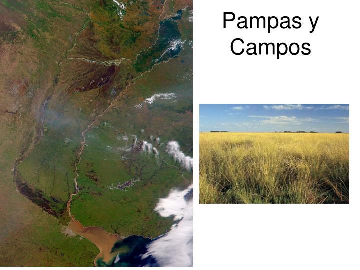 Pampas y Campos