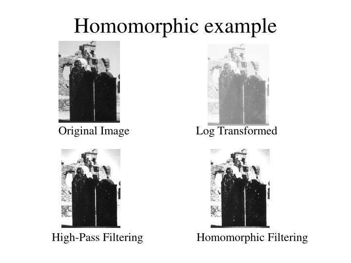 Homomorphic example
