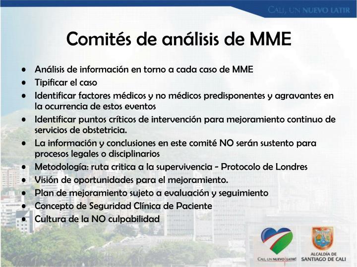 Comités de análisis de MME
