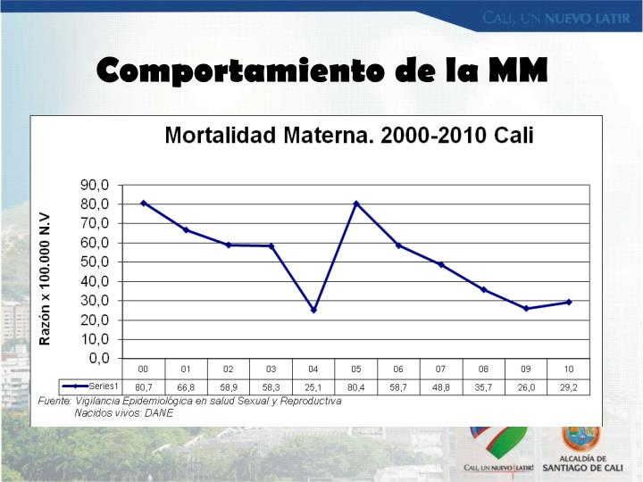 Comportamiento de la MM
