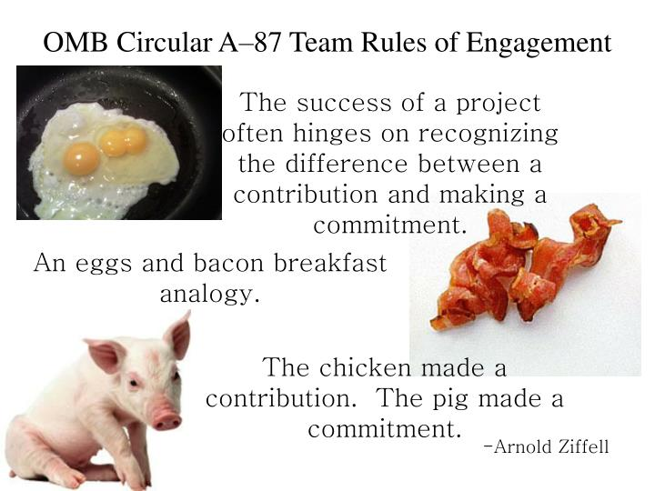OMB Circular A–87 Team Rules of Engagement
