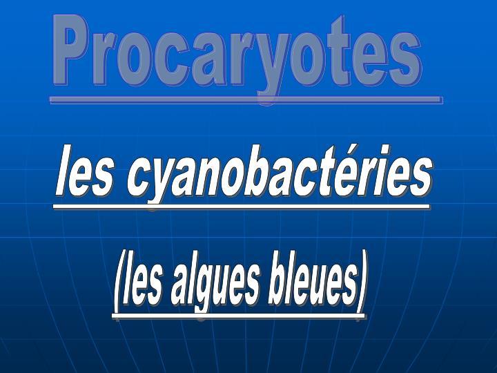 Procaryotes