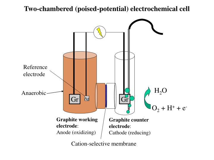 Two-chambered (poised-potential) electrochemical cell