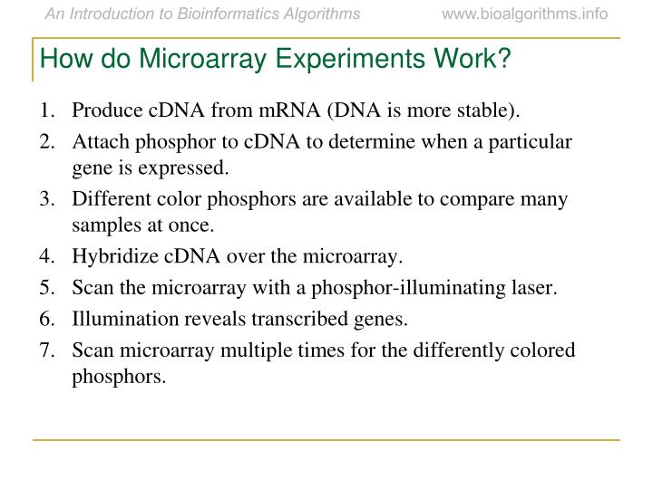 How do Microarray Experiments Work?