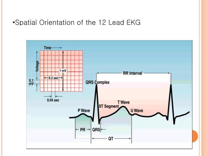 Spatial Orientation of the 12 Lead EKG