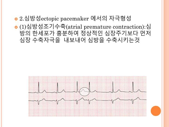 2.심방성