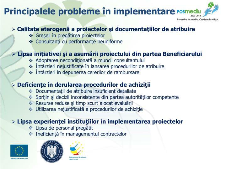 Principalele probleme în implementare