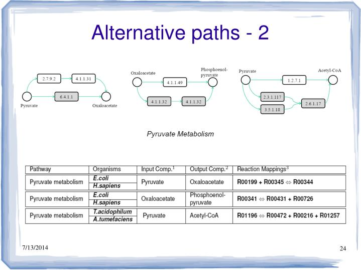 Alternative paths - 2
