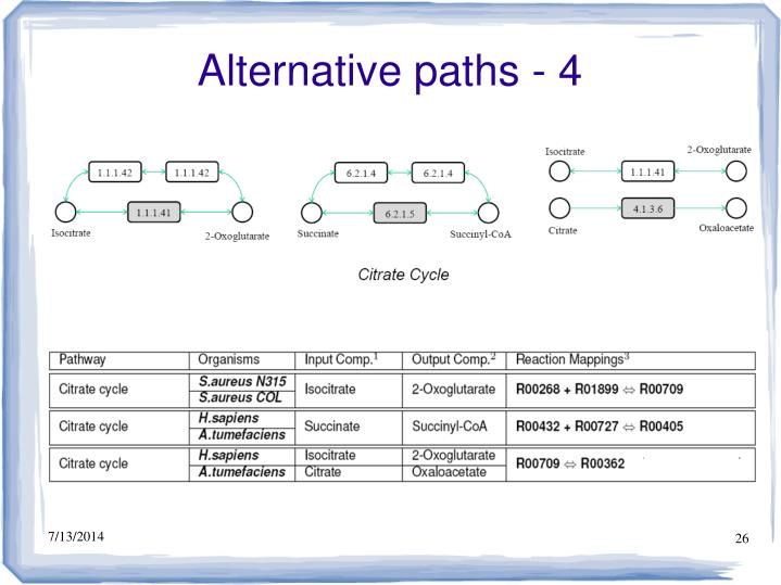 Alternative paths - 4