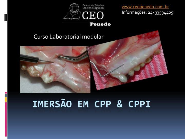 www.ceopenedo.com.br