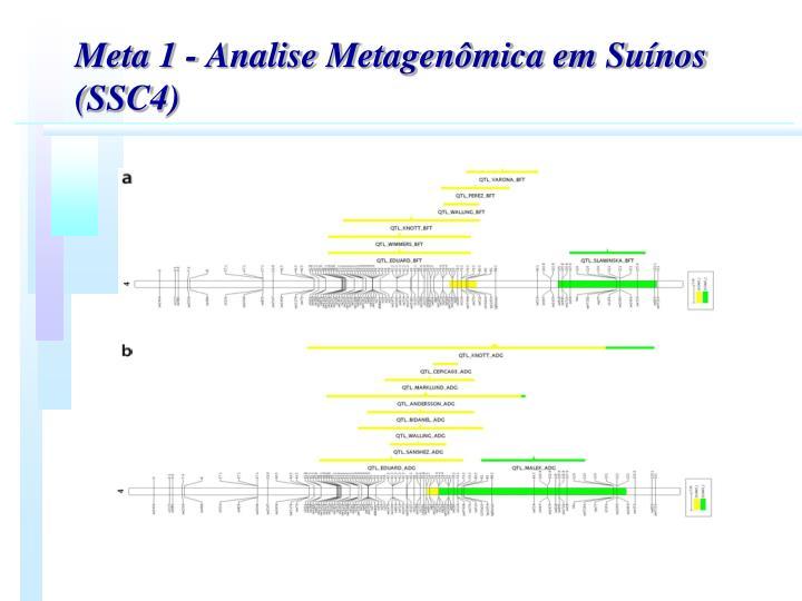 Meta 1 - Analise Metagenmica em Sunos (SSC4)
