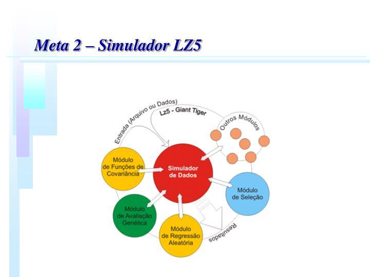 Meta 2  Simulador LZ5
