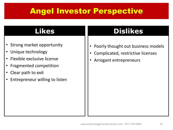 Angel Investor Perspective