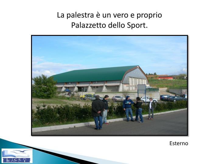 La palestra è un vero e proprio Palazzetto dello Sport.