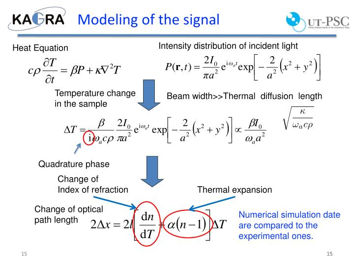 Modeling of the signal