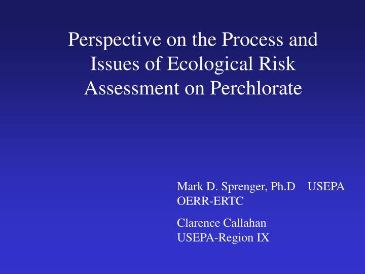 Perspective on the Process and Issues of Ecological Risk Assessment on Perchlorate