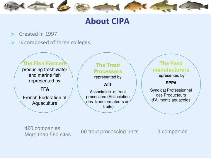 About CIPA