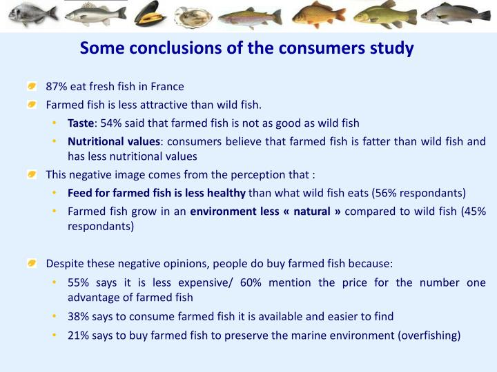Some conclusions of the consumers study