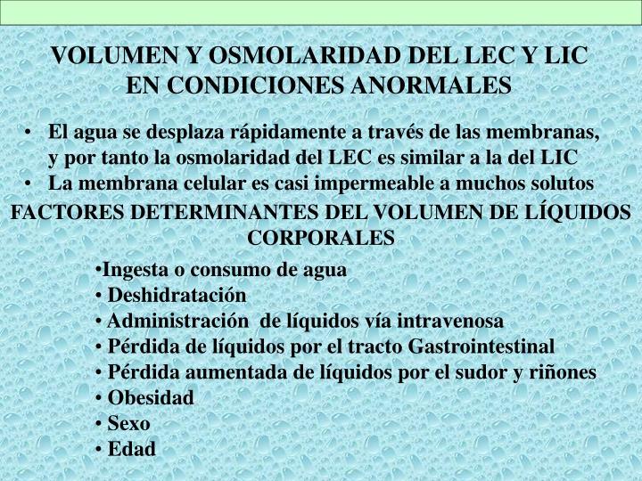 VOLUMEN Y OSMOLARIDAD DEL LEC Y LIC