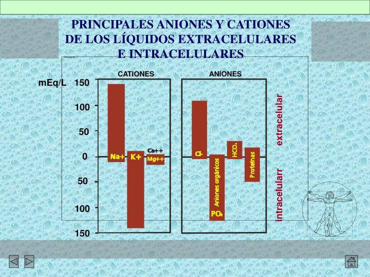 PRINCIPALES ANIONES Y CATIONES