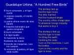 guadalupe urbina a hundred free birds