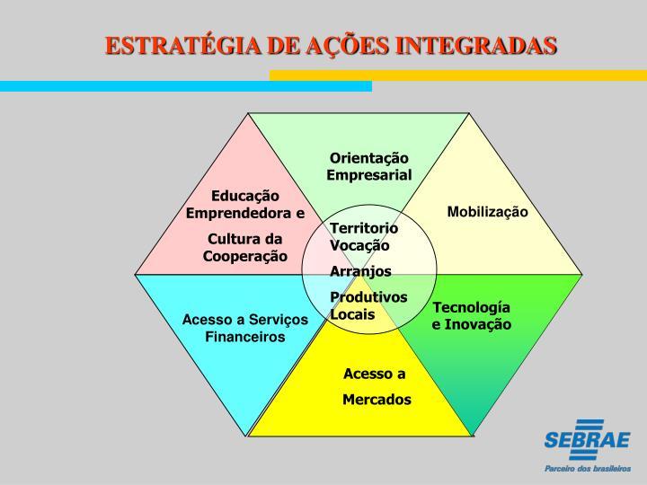 ESTRATÉGIA DE AÇÕES INTEGRADAS