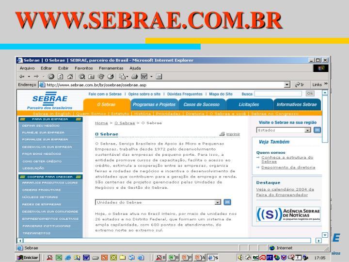 WWW.SEBRAE.COM.BR